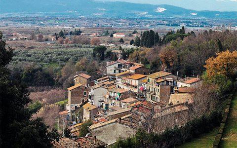 Gita da Roma / Vignanello (Viterbo) tra vino e olio