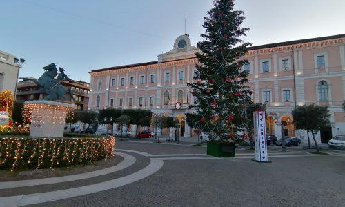 Campobasso, ecco l'albero di Natale