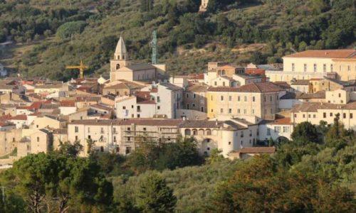 Larino (Cb): settimana dell'olivo a scuola