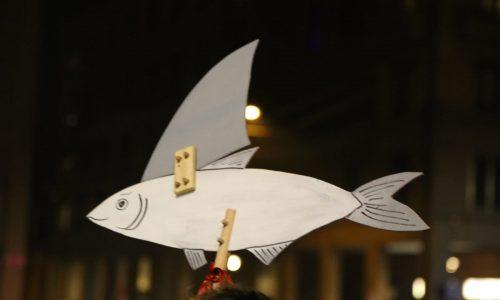Le sardine a Campobasso