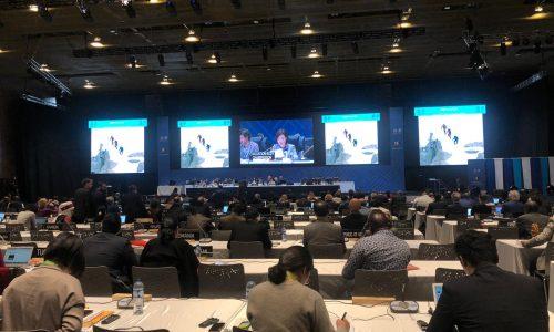"""Oltre alla transumanza, anche l'alpinismo """"promosso"""" dall'Unesco"""