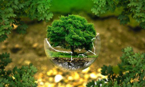 Politiche green che puntino sulle tecnologie naturali di biocontrollo