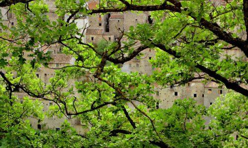 Il verde Molise: la porta che apre al domani