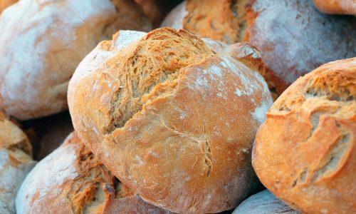 Coltivare e custodire il pane