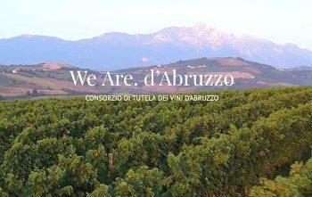 Premiato il Consorzio tutela vini d'Abruzzo