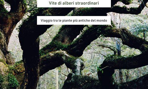 """Libri, gli alberi """"straordinari"""" dell'architetto Zora del Buono"""