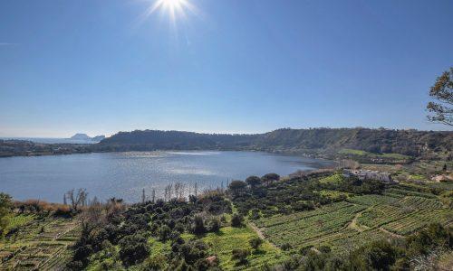 Dalla Campania un olio d'eccellenza