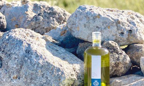 Il Sud che ci piace: l'olio delle tenute Allegretti