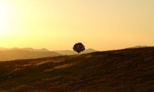 Transizione ecologica, ma serve la partecipazione di tutti