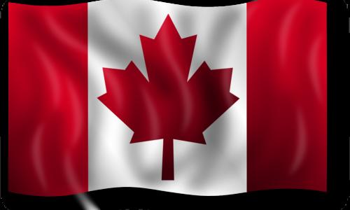 G20 / Tavola Rotonda Italia-Canada sull'attuazione delle strategie sull'idrogeno