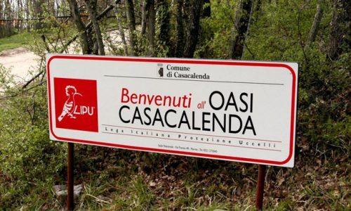 Molisani: Antonio Vincelli da Casacalenda