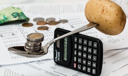 Reddito e lavoro di cittadinanza