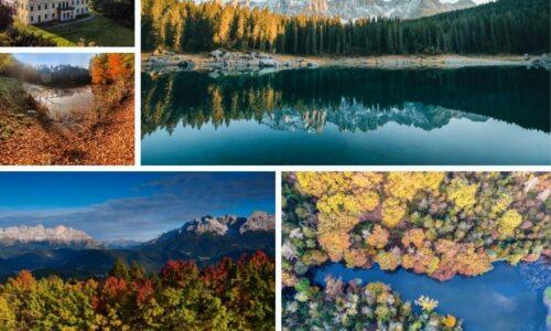 I boschi più belli: c'è anche il Molise